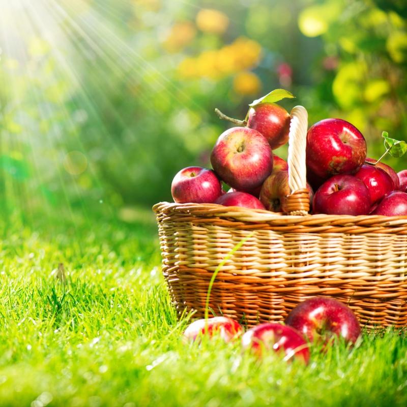 Domaći prirodni sok od jabuke